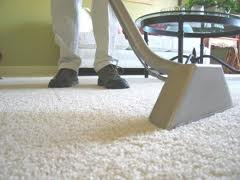 Carpet Mould Treatment Sydney | Carpet Mould Removal Sydney